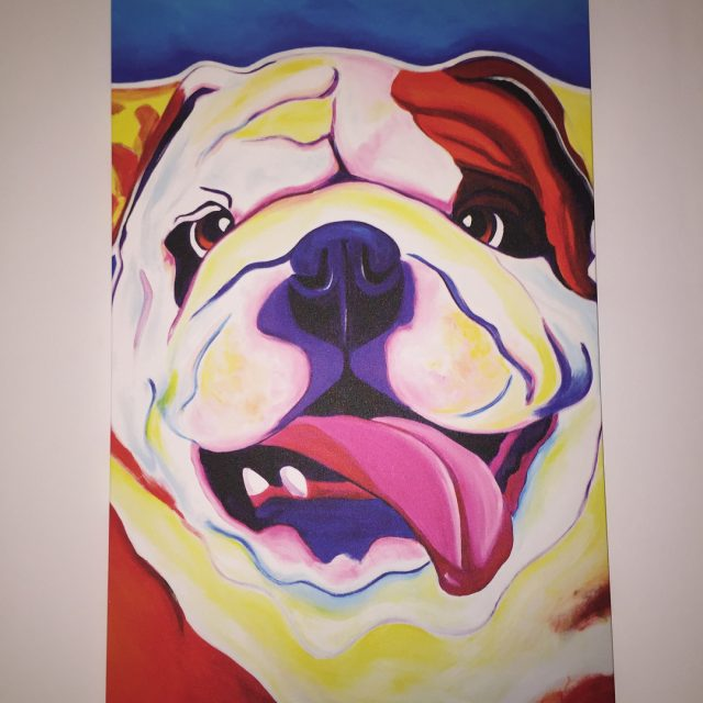 An ode to our Furry Friends  Our new galleryhellip